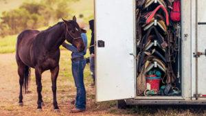 horse-emergency-plan